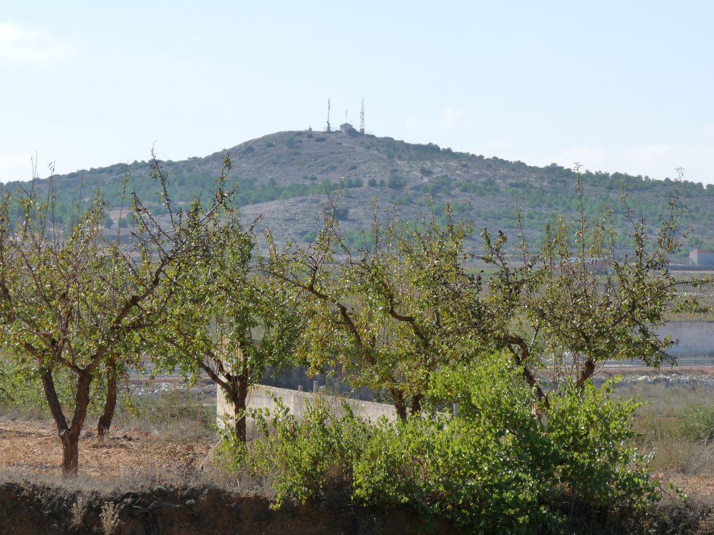Cerro San Jorge